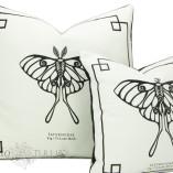 sm-moth-5
