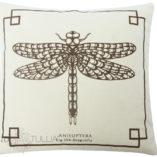 natural-brown-small-dragonfly-1