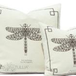 natural-brown-small-dragonfly-3