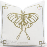 natural-gold-small-moth-1