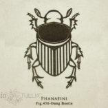 tote-beetle-2