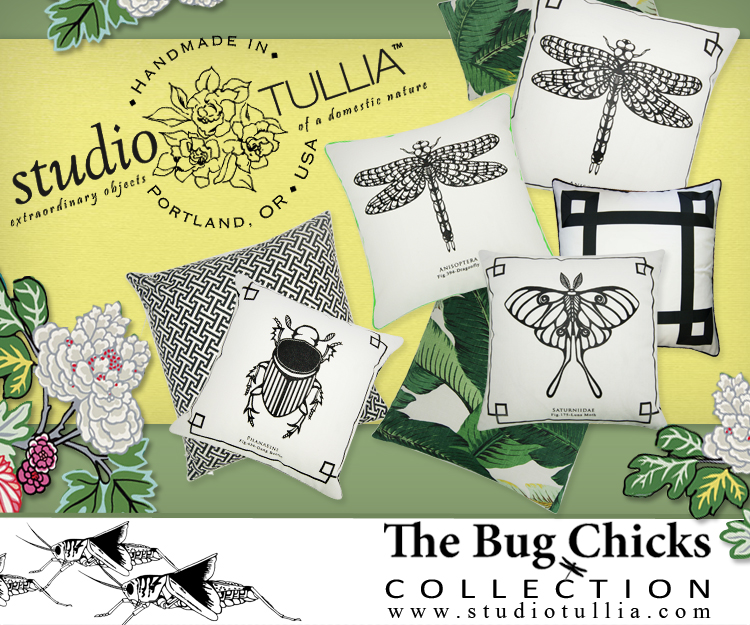 CURRENT PROMOTION & Product Launch for the THE BUG CHICKS COLLECTION